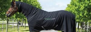 horse-sportzvibe