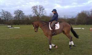 Practising my dressage test on Joe at home.