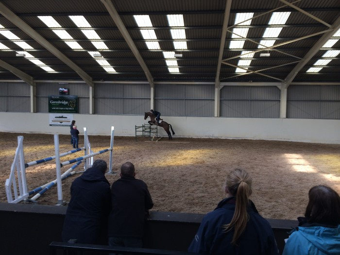 Watching a horse perform in the indoor.