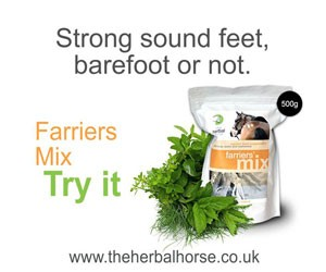 Farriers mix – Strong sound feet, barefoot or not.