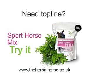E-venting banner - Sport Horse - 20150504