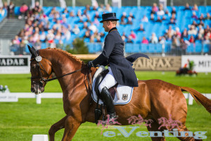 Michael Jung and fischerTakinou