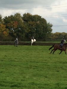 Jumping round as a group. All the horses went well in this format.