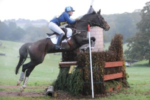 The fences are known to be beefy but jump very well