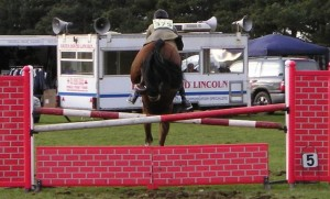 Sloping/Swedish oxer - acceptable in the ring, but not as a practice fence.