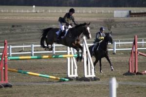 Saddle reflock = PINGING horse, pinging me right out the saddle!