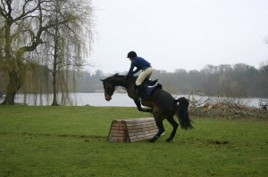 Horses that jump like this with any regularity ARE NOT SAFE!