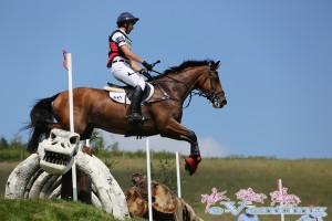 David Doel riding Richoshea clears this scary fellow on route to 4th in section D of the CIC**