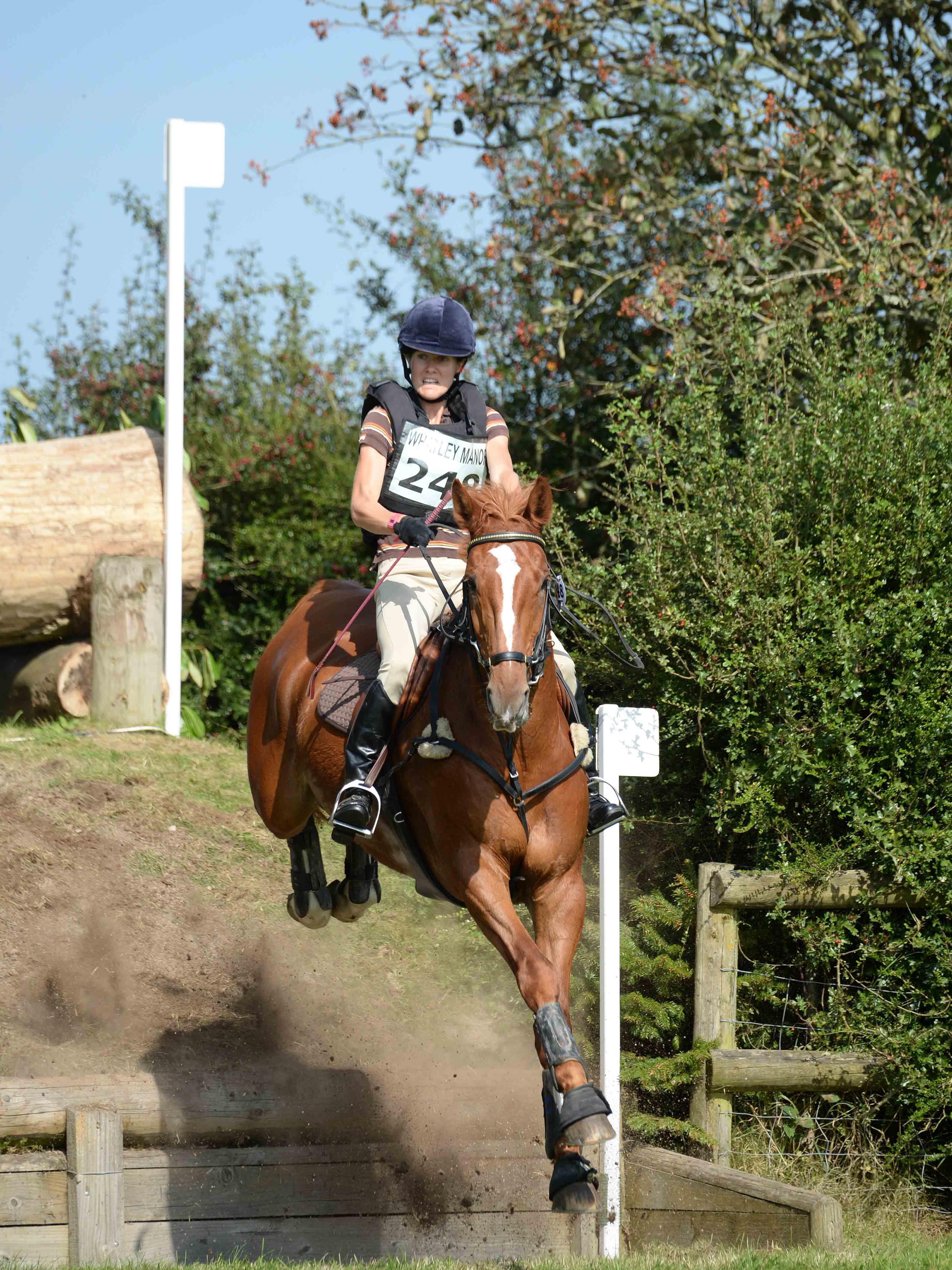 Photo with thanks to www.focusonhorses.com
